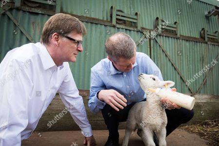 Michael Crockart and Willie Rennie feeding lambs