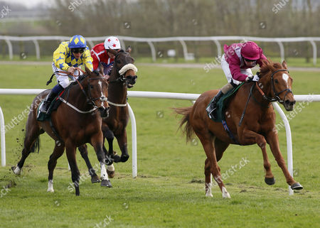 MR GALLIVANTER and Ian Brennan Win the Tom Sowerby 18th Birthday Handicap (Trained by John Quinn) CATTERICK RACECOURSE