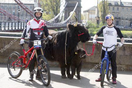 Greg Williamson and Danny MacAskill with Daisy the Highland Cow