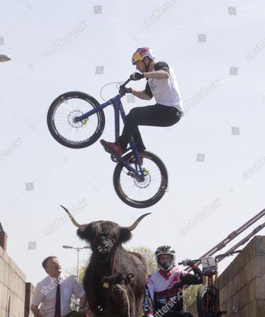 Danny MacAskill jumping Daisy the cow