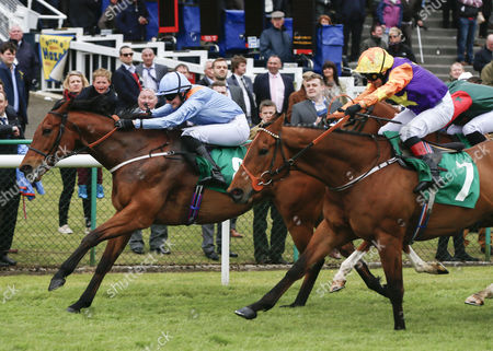CAPTAIN DUNNE and Rachel Richardson win the totepool Racing´s Biggest Supporter Handicap Thirsk Racecourse (for trainer Tim Easterby) second Imperial Legend and Paul Quinn