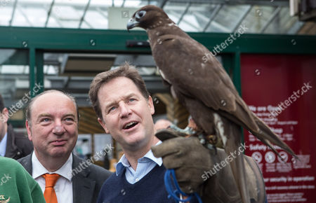 The Deputy Prime Minister and Leader of the Liberal Democrats Nick Clegg holds 'Shadow' a Black Gyr Falcon whilst the Lib Dem PPC for Lewes Norman Baker (left) looks on, outside the Paradise Park Garden Centre in Newhaven during a visit.