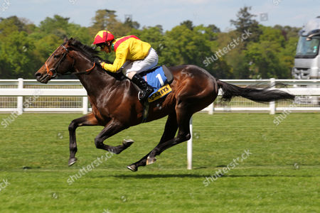Ascot The Carey Group Buckhounds Stakes. Winner; Agent Murphy. Trainer: Brian Meehan. Jockey: Jimmy Fortune.