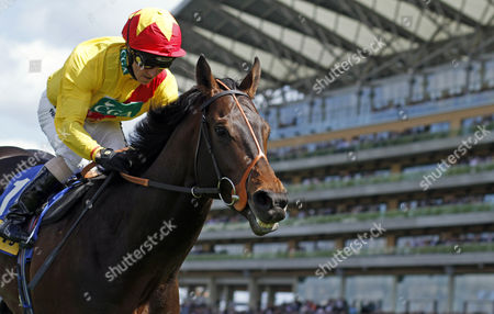 AGENT MURPHY (Jimmy Fortune) wins The Carey Group Buckhounds Stakes Ascot