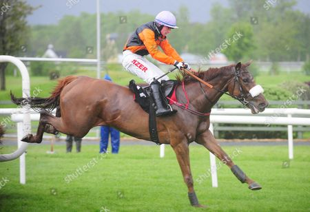 KILLARNEY LOUISE ROYALE and Jonathan Burke win the Killarney Towers Hotel Maiden Hurdle for trainer Tommy Cooper. HEALY RACING