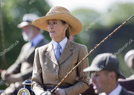 Lady Brabourne takes part in the Laurent-Perrier Meet of the British Driving Society.