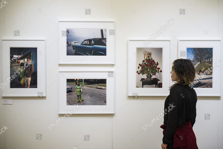 Work by William Eggleston in the Rose Gallery