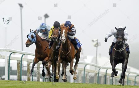 Stock Picture of MISS INGA SOCK (centre, George Downing) beats Ralph McTell (left) and BLACKADDER (right) in The Cobb Digital Handicap Div2 Brighton