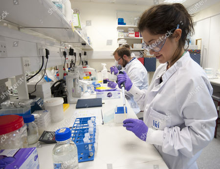 Staff Working In The Medimmune Laboratory Biologic Centre Of Pharmaceutical Company Astrazeneca In Cambridge. Exc Print Before Web / 16.5.14 Reporter Andrew Levy.