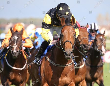 TIGER TIM and Fergal Lynch win for trainer Jim Goldie at Ayr