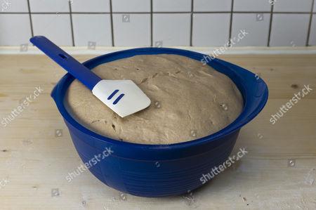 Dough with rye sourdough, rye flour, wheat flour and spelt flour proofing
