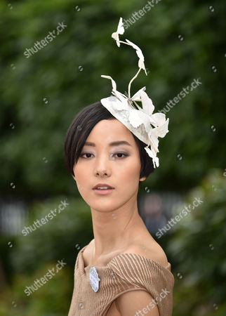 Stock Photo of Pei Bei