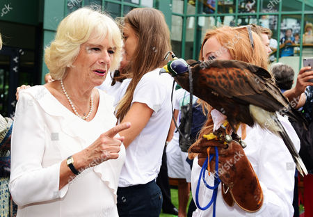 Stock Photo of Camilla Duchess of Cornwall meets Imogen Davis (right) and hawk Rufus during a visit to the Lawn Tennis championships at the All England Lawn Tennis Club