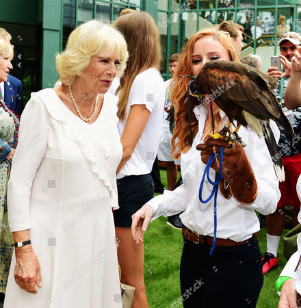 Stock Picture of Camilla Duchess of Cornwall meets Imogen Davis (right) and hawk Rufus during a visit to the Lawn Tennis championships at the All England Lawn Tennis Club