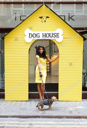 Editorial picture of Dogs Trust Launch Christmas Collections and Collaborations, London - 09 Jul 2015