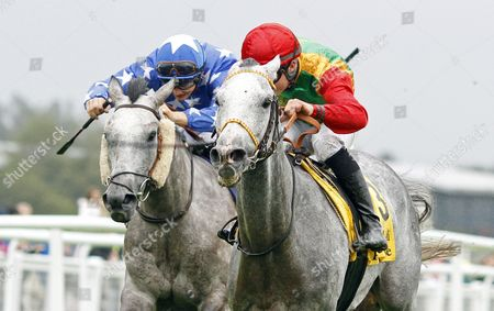 Stock Image of AL MOUHANNAD (right, Thomas Henderson) beats MEEYUR (left) in The Jebel Ali Racecourse Zaabeel International Stakes at the Dubai International Arabian Races Newbury
