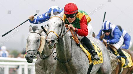AL MOUHANNAD (Thomas Henderson) wins The Jebel Ali Racecourse Zaabeel International Stakes at the Dubai International Arabian Races Newbury