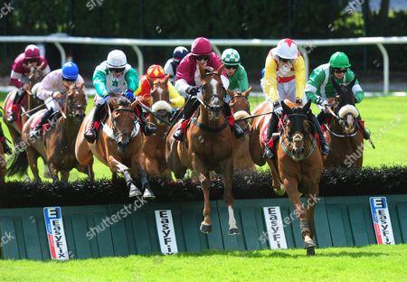 Editorial image of Horse Racing - 29 Jul 2015
