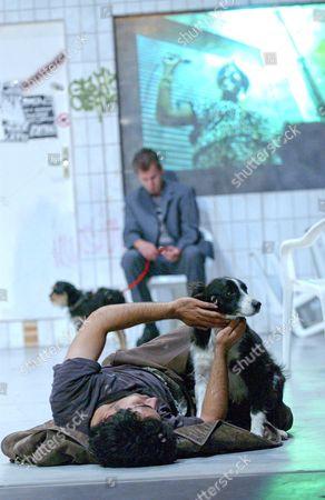 Stock Image of 'Wolf' performed by Les Ballets C de la B