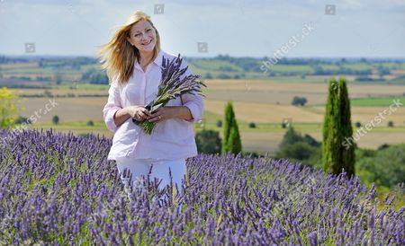 Editorial picture of For Features - Daily Mail Writer Rose Prince (pictured) Visits Yorkshire Lavender Farm Terrington Yorkshire. - Pic Bruce Adams / Copy Prince - 4/8/14.