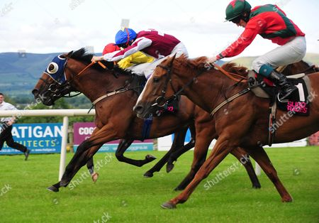 Editorial picture of Horse Racing - 18 Aug 2015