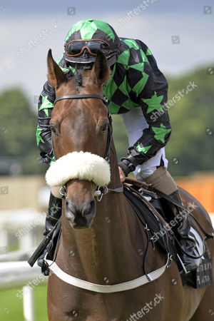 , York, GB, Clever Cookie with Patrick McDonald up at the parade canter.