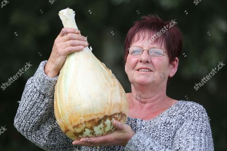 Barbara Cook with her first prize winning Onion at the Giant Veg competition