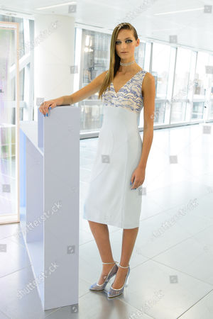 Model in the presentation