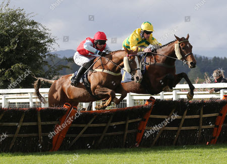 Editorial image of Horse Racing - 24 Sep 2015