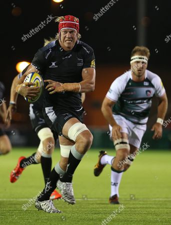 Stock Photo of Falcons new signing, Mouritz Botha on the charge during first half action . Newcastle Falcons v Leicester Tigers Kings of the North match at Kingston Park, Newcastle upon Tyne. September 25th 2015.