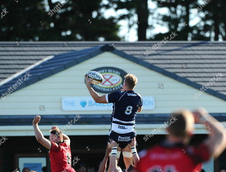 Bristol Rugby Number 8 Mitch Eadie wins a line out