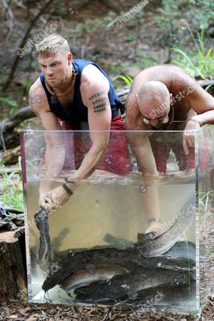 Stock Picture of Freddie Flintoff and Merv Hughes