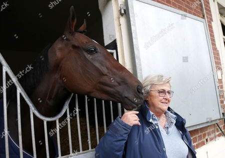 Stock Photo of Criquette Head with Treve after retiring at her yard Chantilly