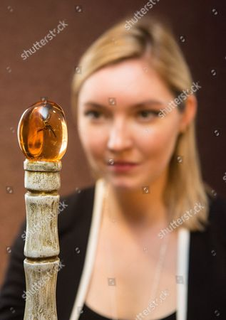 A member of staff from Bonhams looks at a replica of the prop cane used by Attenborough in Jurrasic Park (£3,000-£5,000)