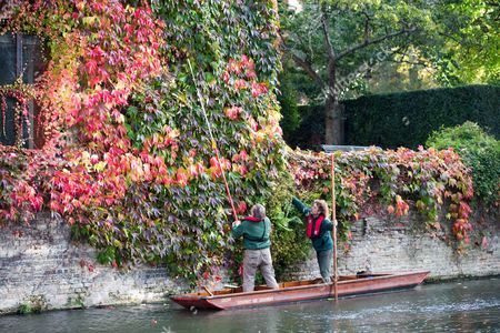Editorial photo of Gardeners on punt trim Boston ivy at St John's College, Cambridge, Britain - 15 Oct 2015