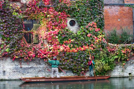 Stock Picture of Picture shows St Johns College gardeners Adam Magee (right) and his colleague Mick Ranford on a punt on the River Cam in Cambridge trimming the wall of Boston Ivy