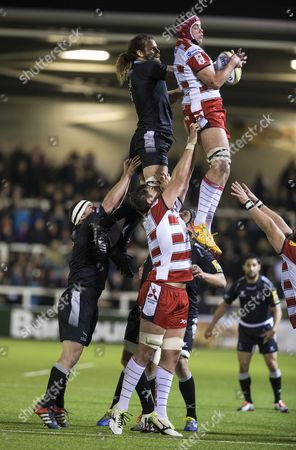 Lineout action from the first half as Elliott Stooke takes clean ball with Newcastle Falcons Todd Clever competing. Newcastle Falcons v Gloucester in the Aviva Premiership match at Kingston Park, Friday 16th October 2015.