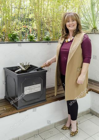 Stock Picture of Coleen Nolan planting the Memorial Rose