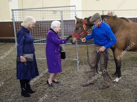 Stock Image of Camilla Duchess of Cornwall and Queen Elizabeth II with Monty Roberts