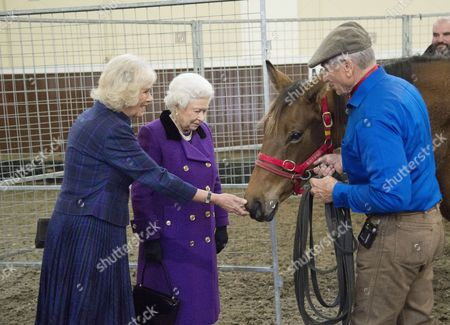 Stock Picture of Camilla Duchess of Cornwall and Queen Elizabeth II with Monty Roberts