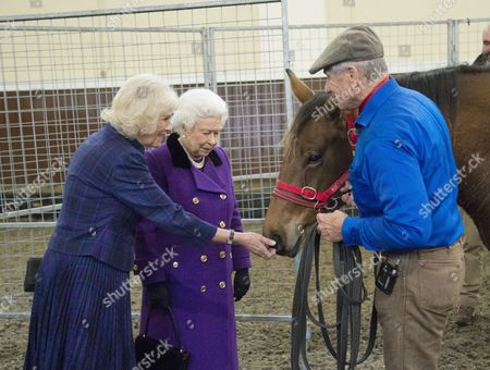 Editorial image of Horse Whispering Demonstration and Reception, London, Britain - 21 Oct 2015