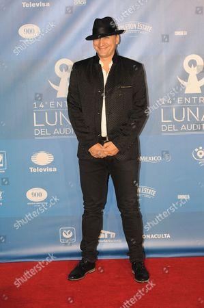 Editorial photo of 14th Lunas del Auditorio Awards Arrivals, Mexico City, Mexico - 28 Oct 2015