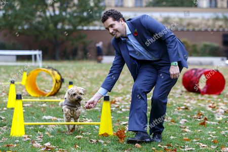 Edward Timpson and his dog Stanley