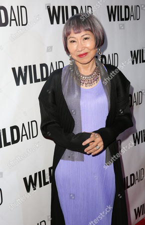 Stock Photo of Amy Tan