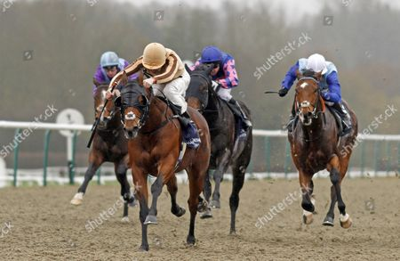 HAPPY CALL (Robert Havlin) beats SIR ROGER MOORE (right) in The 32Red/Irish Stallion Farms EBF Maiden Stakes Lingfield