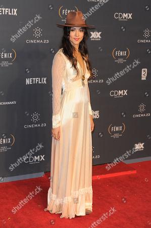 Diana Garcia arrives at The Fenix Iberoamerican Film Awards at Teatro de la Ciudad
