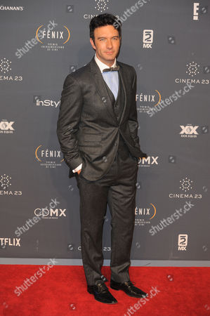 Leonardo de Lozanne arrives at The Fenix Iberoamerican Film Awards at Teatro de la Ciudad