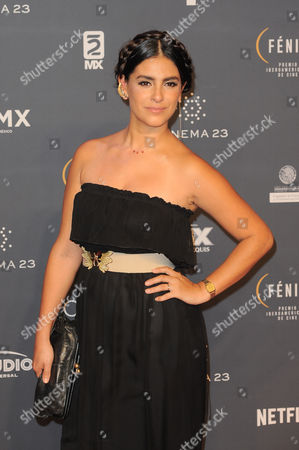 Liz Gallardo arrives at The Fenix Iberoamerican Film Awards at Teatro de la Ciudad