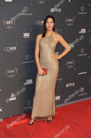 Martha Cristiana arrives at The Fenix Iberoamerican Film Awards at Teatro de la Ciudad