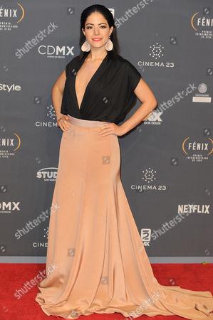 Stock Image of Adriana LLabres arrives at The Fenix Iberoamerican Film Awards at Teatro de la Ciudad